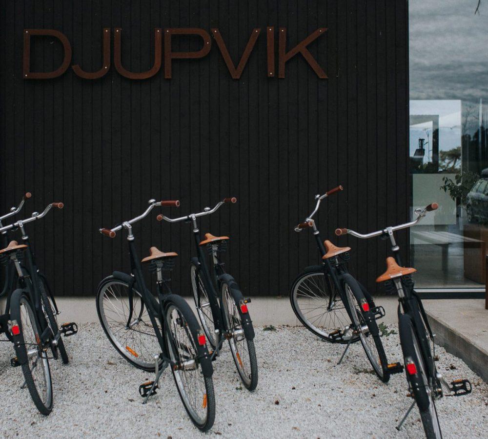 Djupvik Hotel Gotland